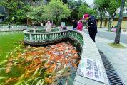 景区公园贴心服务 志愿者热情引导 文明旅游春风吹遍肇庆