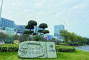 绿化管养力度不减,卫生不乱保洁到位 城区街头小景越来越靓丽