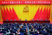 中共肇慶市委十二屆十四次全會在肇慶新區召開