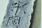 肇慶古城墻有歷代城磚四五十種,留下了大量歷史信息 古城磚:打開城墻修葺史的鑰匙