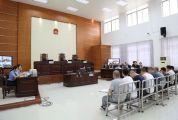 严国文等9人涉黑案庭审案