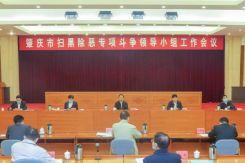 肇庆召开扫黑除恶专项斗争领导小组工作会议