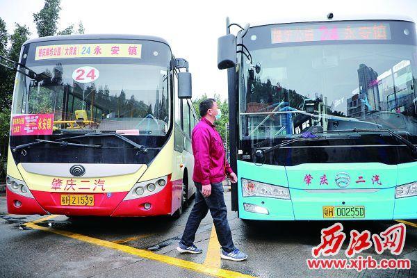 最后一辆24路液化天然气公交车(左)停运,肇庆公交迈进纯电动时代。 西江日报记者 严炯明 摄