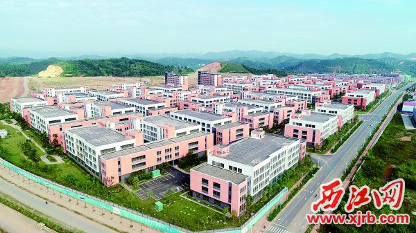 粤桂合作特别试验区。  西江日报通讯员 刘东桦 摄
