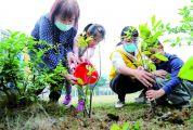 众人植树树成林 端州城区开展多项全民义务植树活动
