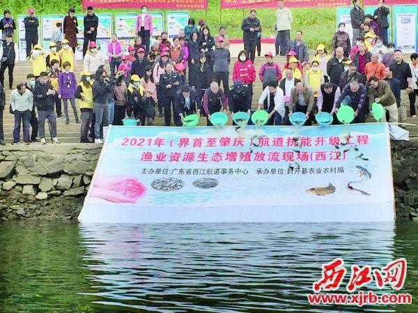 封开县举办鱼类人工增殖放流活动。 西江日报通讯员 丰宇 摄