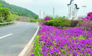 封开县开展创建贺江碧道画廊国家4A级景区