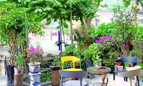 """花卉小景绿植环绕 清洁绿色健康文明 """"最美庭院""""成鼎湖乡村风景线"""