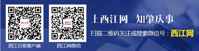 报社客户端及西江网微信二维码
