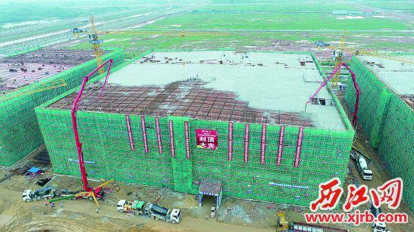 电子信息产业园首栋厂房封顶。 西江日报通讯员 王超群 摄