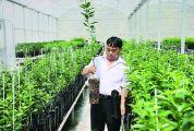 一个园拉动15亿贡柑产业 ——记德庆贡柑省级现代农业产业园