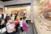 肇庆启动国际博物馆日、文化和自然遗产日系列活动