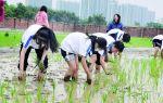 鼎湖区实验中学获首批广东省中小学劳动教育特色学校称号 特色劳动教育深受学生欢迎