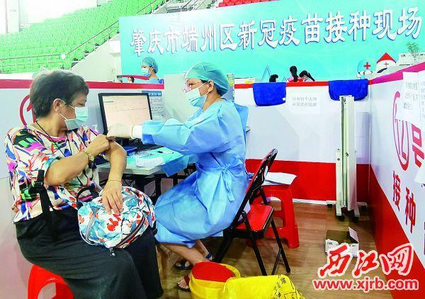 医护人员为老年人接种新冠疫苗。 西江日报记者 戴福钿 摄