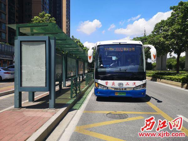"""肇庆公交K02快线停靠""""向阳村""""站。 记者 岑永龙 摄"""