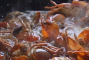 流口水预警!这些产自威尼斯人网站的威尼斯人官网下载-美食你不一定尝过!