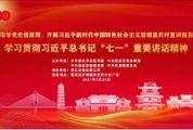 注册送68体验金市学党史悟原理、开展习近平新时代中国特色社会主义思想进农村宣讲报告会