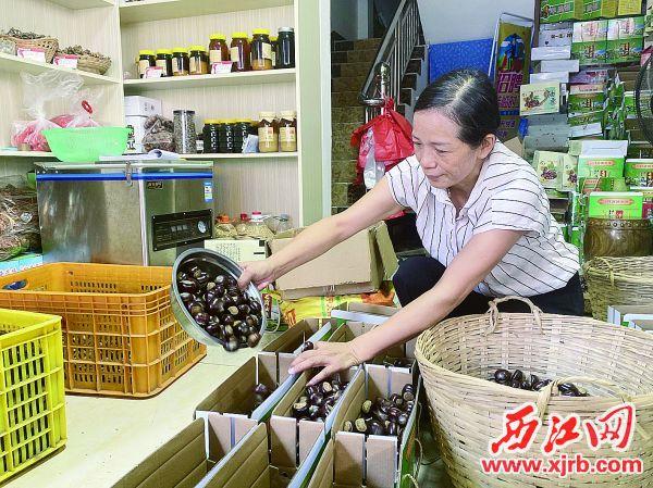 在销售点里,珍爱农场场主李秀珍将封开油栗装箱。 西江日报记者 潘粤华 摄