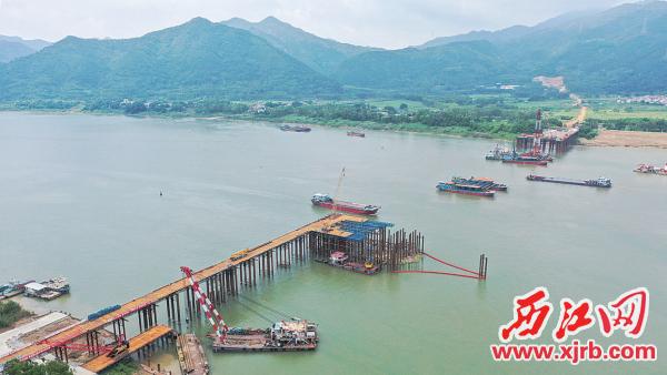 肇明高速公路项目杨梅西江特大桥施工现场如火如荼。 西江日报通讯员 梁亮 摄