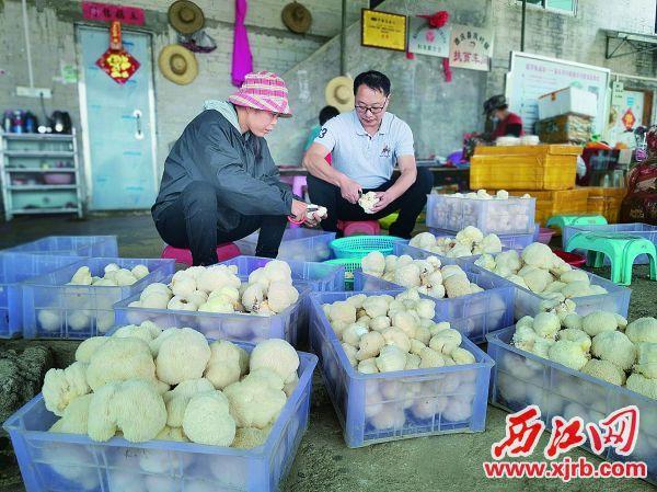 刘晓林在和贫困户一起劳动。 受访者供图