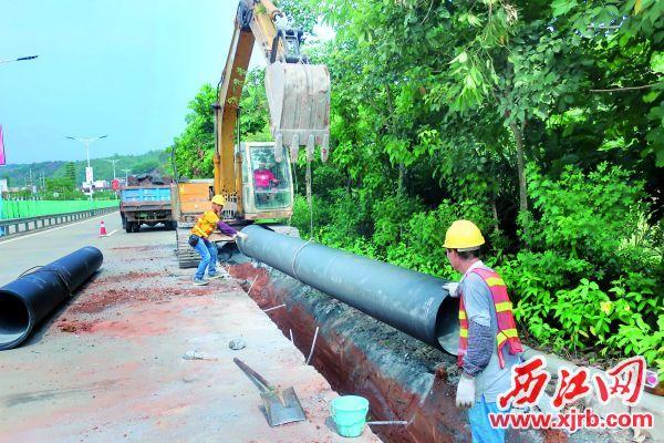 肇水集团施工人员正在铺设供水管道。 西江日报记者 严炯明 摄