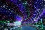 官宣!肇庆这场大型冰雪灯光艺术节来了,就在……