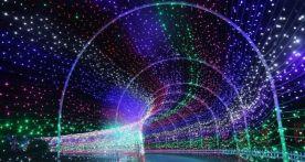 官宣!威尼斯人网站这场大型冰雪灯光艺术节来了,就在……