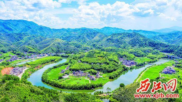 古水河河畔的竹林幽径美丽迷人。 西江日报记者 曹笑 摄