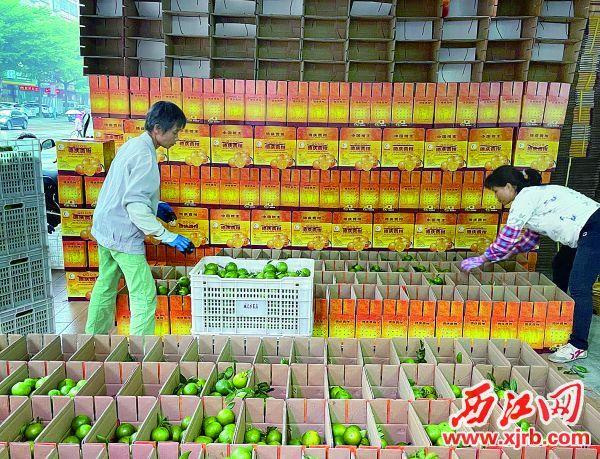 城记合作社在德庆县城的网点,快递费用较低,许多种植户和经销商都到此发货。 受访者供图
